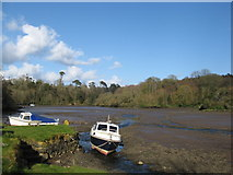 SW7724 : Gillan creek by Dr Duncan Pepper