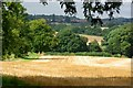 SP2874 : Typical Warwickshire countryside by Keith Williams