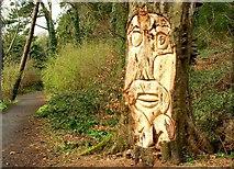 J4772 : Carving, Killynether Wood (1) by Albert Bridge