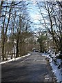NY3302 : Road near Colwith by DS Pugh