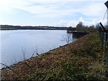 NS4870 : View west on River Clyde from grounds of Beardmore Hotel by Stephen Sweeney