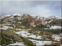 NY3404 : Neaum Crag & Loughrigg by DS Pugh