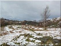 NY3404 : Top of Neaum Crag by DS Pugh