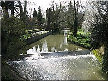 TL5646 : Weir on the River Granta at Linton by Colin Bell