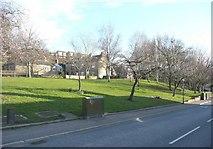 SE1421 : Green, Rastrick Common, Rastrick by Humphrey Bolton