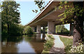 TQ0562 : Motorway bridge over the River Wey by Dr Neil Clifton
