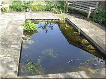 TQ2673 : The Pond by Chris Cox