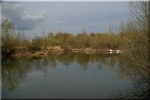 TQ5684 : Fishing Lake by Glyn Baker