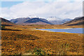 NH2873 : The western shore of Loch Glascarnoch by Nigel Brown