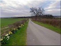 SE5214 : Private Road but Public Footpath by Steve  Fareham
