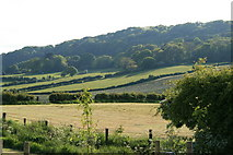 NZ9404 : View from Middlewood Farm Fylingthorpe by Ian Hudson