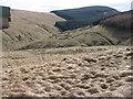 NN9701 : Hillside towards Glen Quey and Hillfoot Hill by Chris Wimbush