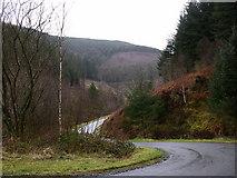 SH8010 : Winding mountain road by liz dawson