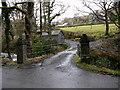 SH7710 : Bridge leading to Llwydiarth Hall by liz dawson