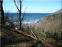 NS2209 : View north from the Culzean cliff path by Gordon Brown