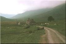 NN1364 : West Highland Way by John Sparshatt