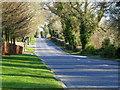 J4778 : Crawfordsburn Road, Clandeboye [3] by Rossographer