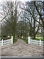 TG1122 : Driveway to Booton Hall by Evelyn Simak
