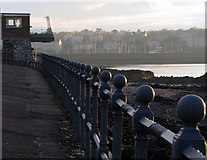 J5182 : Railings along the Seacliff Road, Bangor by Rossographer