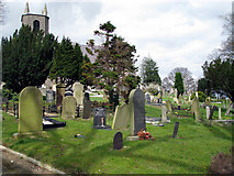 J3267 : Graveyard, Holy Trinity Drumbo, Ballylesson by Rossographer