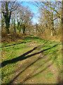 TQ2112 : Footpath Junction by Simon Carey