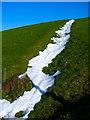 TQ2111 : Gully, Tottington Mount by Simon Carey