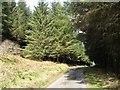 NR6080 : The Jura road, Druim Dubh by Richard Webb