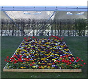 TL5523 : Airport flower bed by Thomas Nugent