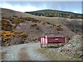 NS0771 : Red Box by Lynn M Reid