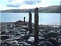 NS0771 : Old Fenceposts On The Shoreline by Lynn M Reid
