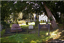 TQ2794 : Conservation Management Area, St Mary the Virgin's Churchyard, East Barnet by Christine Matthews