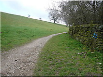 SK2468 : Footpath from Calton Houses to Edensor by Alan Heardman