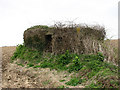 TG3334 : Overgrown WWII pillbox by Evelyn Simak
