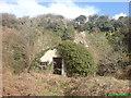 SM8722 : Nissen Hut near Roch Bridge by Deborah Tilley