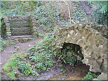 SU9948 : Grotto Below St Catherine's Hill by Colin Smith