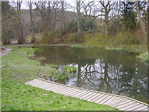 NT4835 : A pond in Gala by James Denham