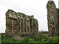 TG3433 : Broomholm Priory by Evelyn Simak