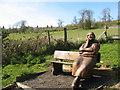 TQ8853 : Wooden pilgrim by Stephen Craven