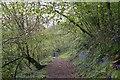 SO7637 : Gated Path on Hollybush Hill by Bob Embleton