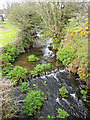 SW4231 : Stream at Newbridge by Pauline E