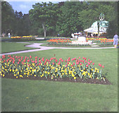 SE2955 : Tulips and magnesia well in the Valley Gardens by Trevor Rickard