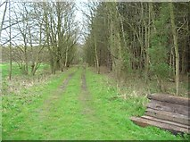 SE6959 : Sleepers in Whey Carr Plantation by DS Pugh