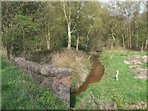 SJ7638 : River Tern passing under A53 bridge by John M