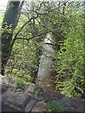 SJ7638 : River Tern downstream of A53 bridge by John M