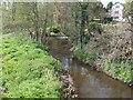 SJ7238 : River Tern at Bearstone Mill by John M
