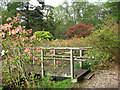 TG0634 : Stody Lodge - Japanese Water Gardens by Evelyn Simak