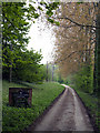 SE9627 : The road up Welton Dale by Andy Beecroft
