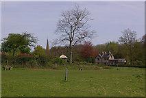 TQ1450 : Ranmore by Ian Capper