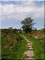 NY5464 : Kissing Gate - Hadrians wall path by mauldy