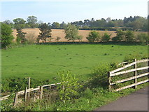 TM1154 : View across fields from cycleway by Andrew Hill